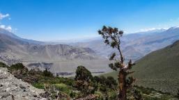 Annapurna Dolpo Népal-13