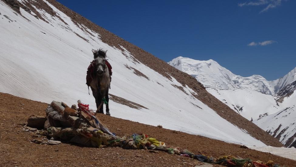 Annapurna Dolpo Népal-40