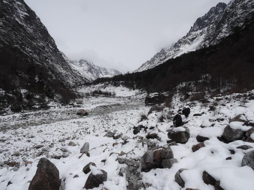 Kanchenjunga village Népal-2