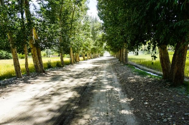 Pamir Highway-37