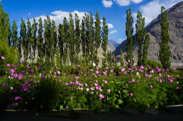 Pamir Highway-40