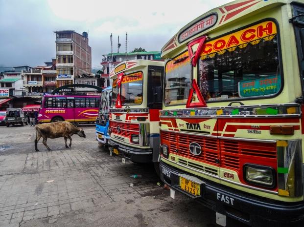 Visite de l'Inde-102