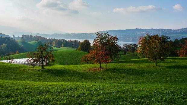 Suisse 6