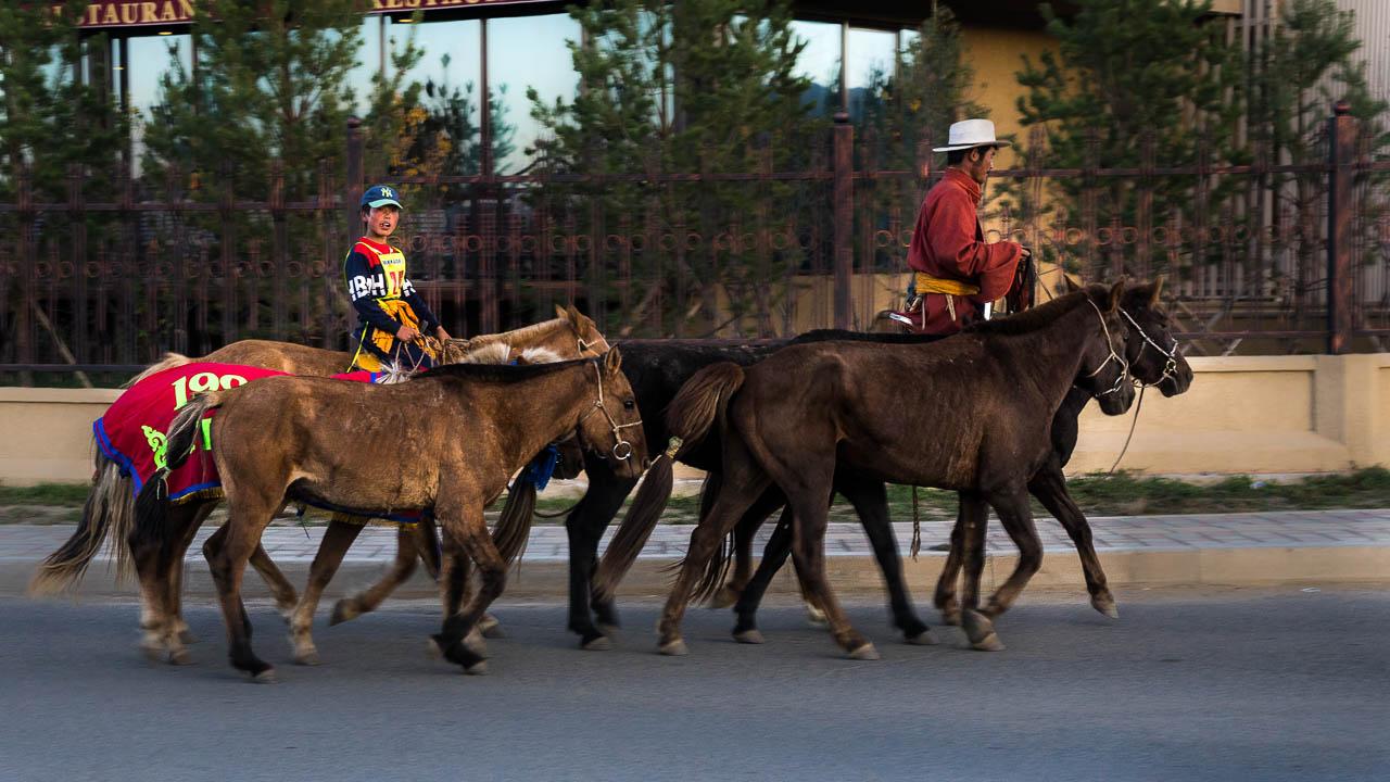 Mongolie à vélo 2633