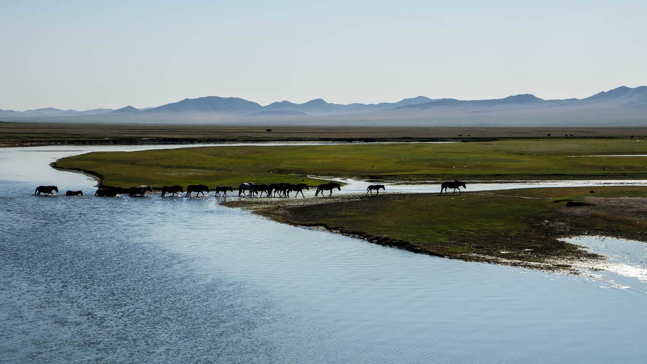 Mongolie à vélo 3250