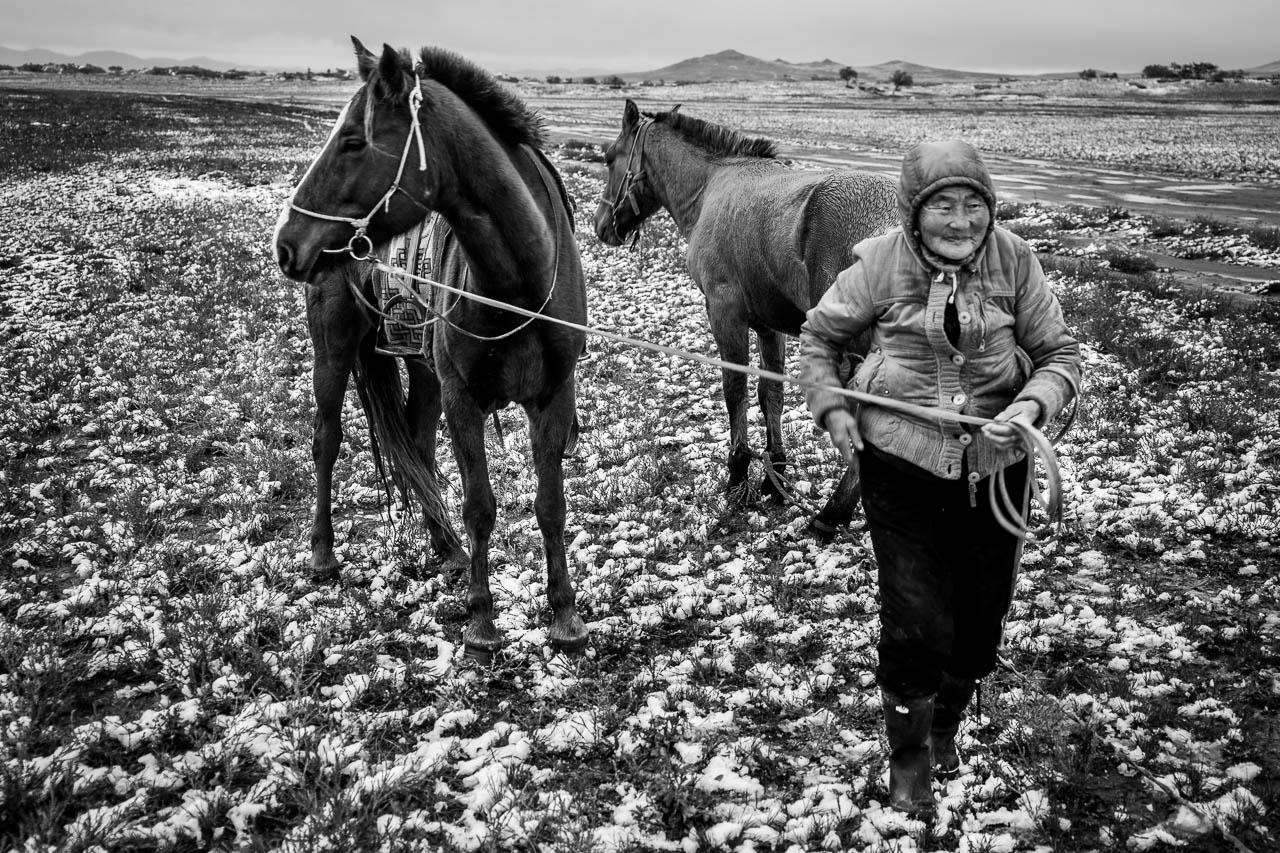 Mongolie à vélo 3352