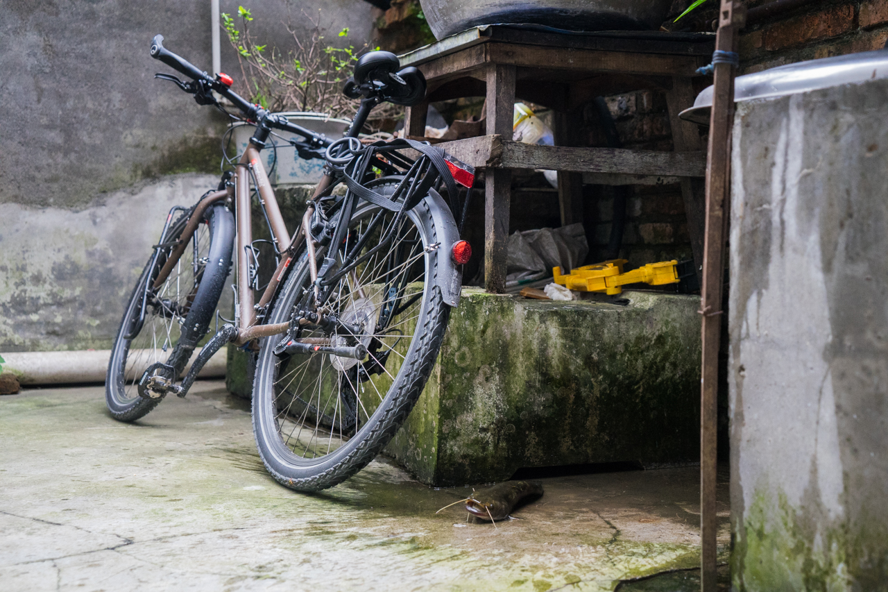 Sichuan à vélo-10