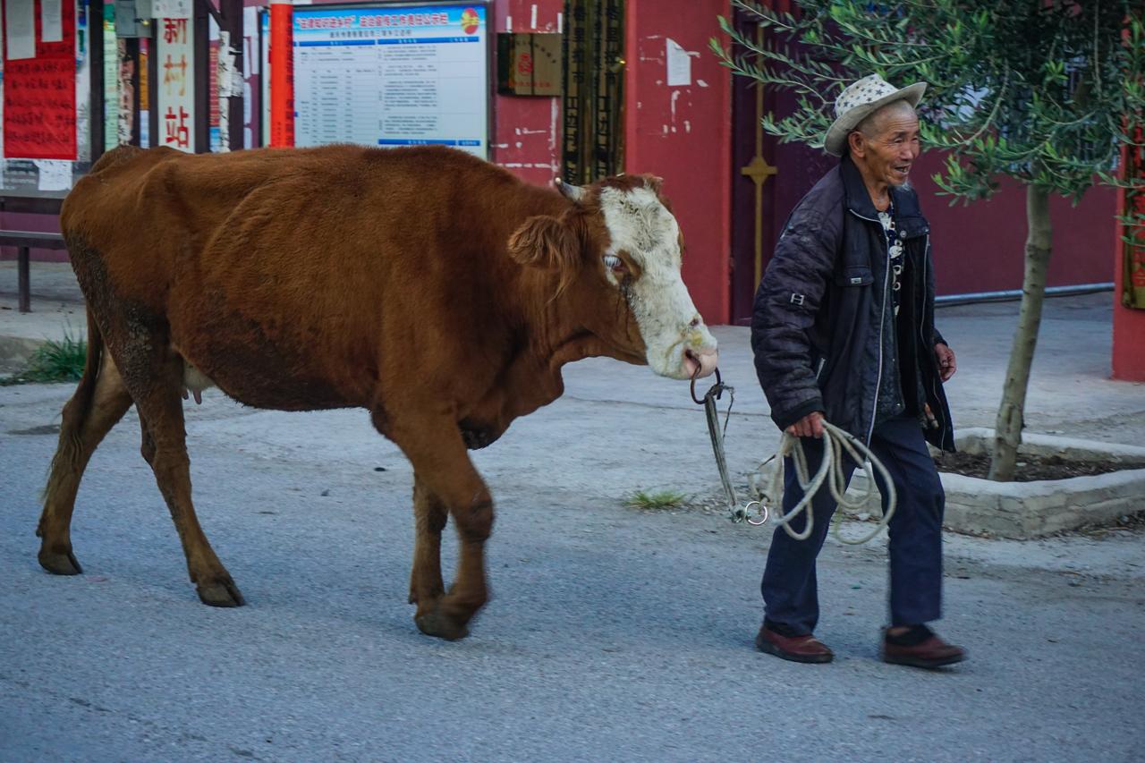 Chine Yunnan-76