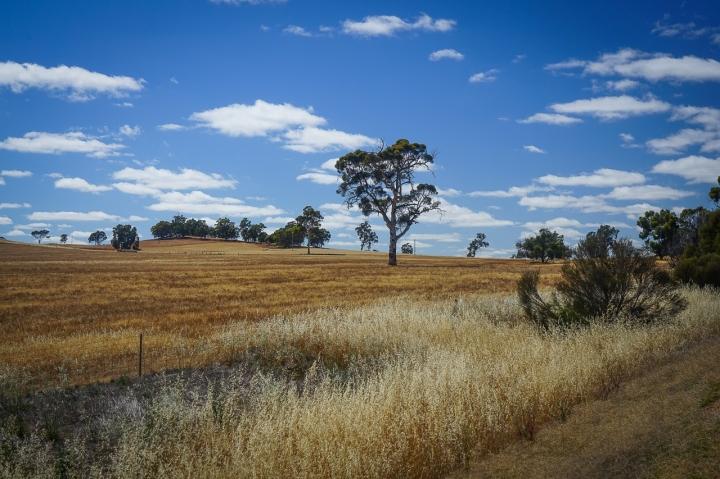 Australie à vélo-3