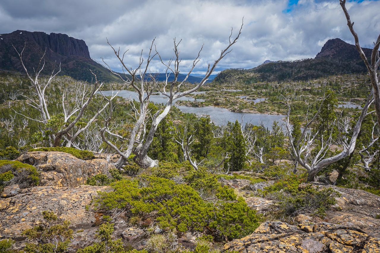 Tasmanie-41