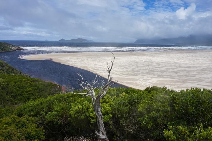 Tasmanie-68