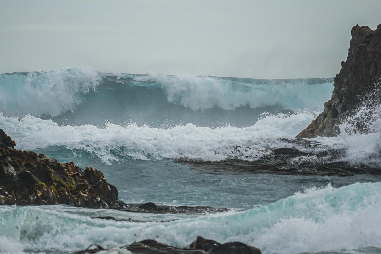 Stewart Island-69