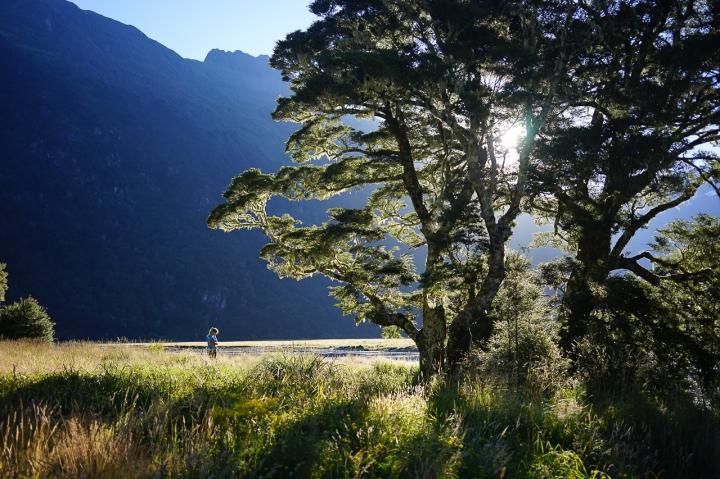 trekking wanaka region-12