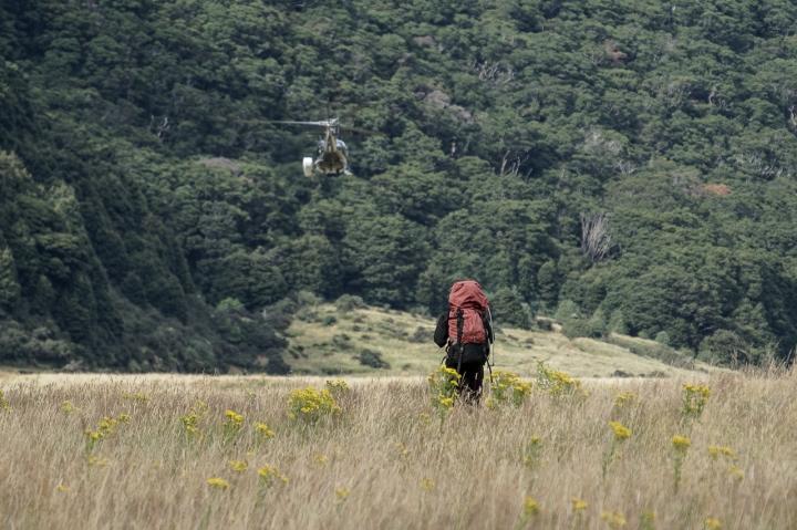 trekking wanaka region-8