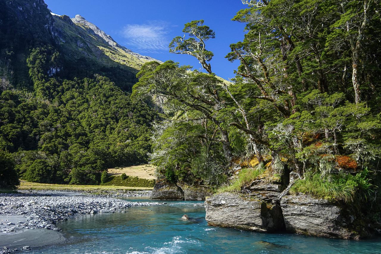 Voyage Nouvelle Zélande-23