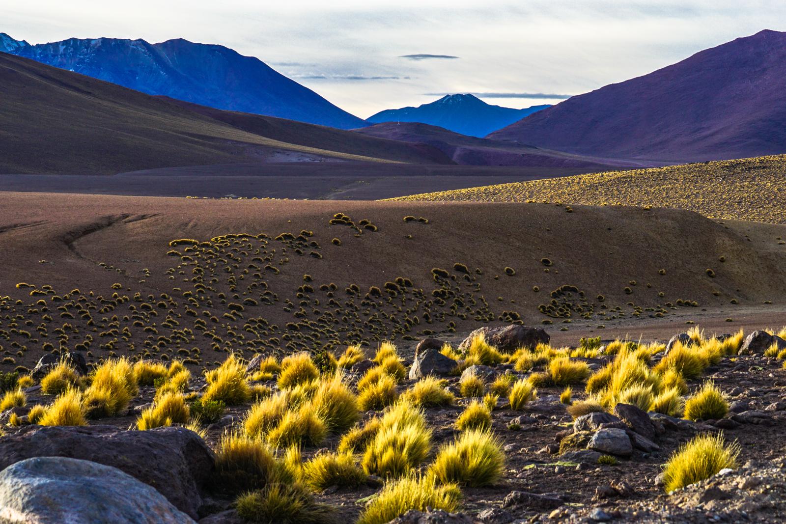 Photos Atacama-29